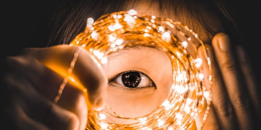 Le 05 juin 2018 – Séminaire annuel FFE – Le papillonnage et l'intuition : moteurs du succès de l'entrepreneur ?